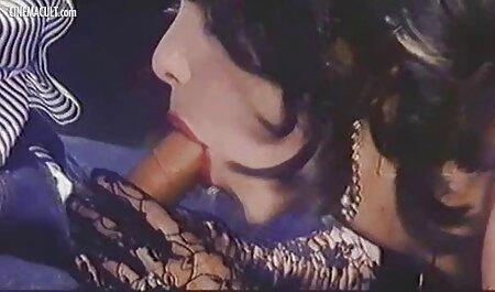 زیبا و دلفریب, زوج حشری انجمن سنجاب